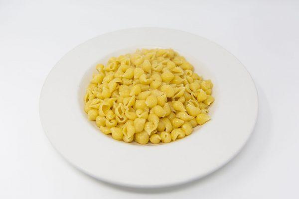 Freshly prepared shell pasta